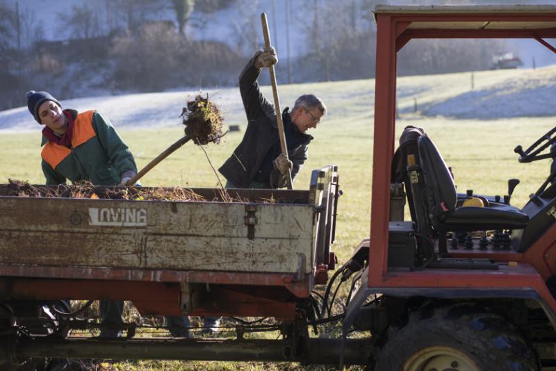 Les ouvriers bêchent la terre